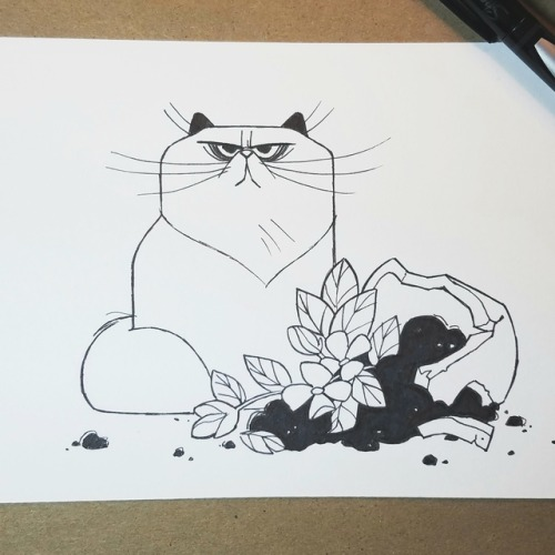 Daily Cat Drawings 748  InkTober Day 12    Shattered    The devil plant is