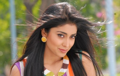 Shriya Saran Bollywood Actress New Pictures, Images (High Quality) - All HD Wallpapers
