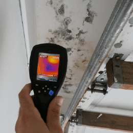 Mold inspection inside house
