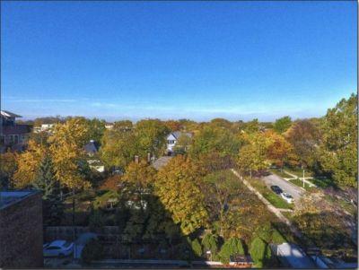 147 N Euclid Ave Unit 506, Oak Park, IL 60302 - realtor.com®