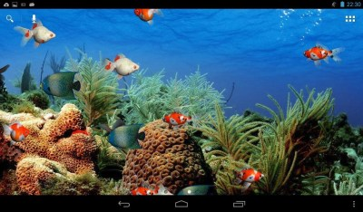 Aquarium Live Wallpaper Free Android Live Wallpaper download - Appraw