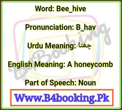Bee_hive Meaning In Urdu and English and it's Pronunciation