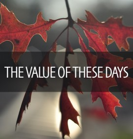 Value of These Days