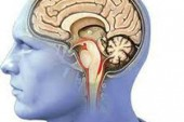 Part of mind that creates we go 'ouch' identified