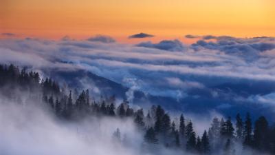 18 Stunning HD Mist Wallpapers