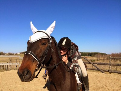 Free Images : outdoor, track, jumping, rider, show ...