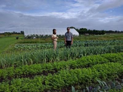 Michigan Organic Farm Stands in 'Good Stead'   USDA