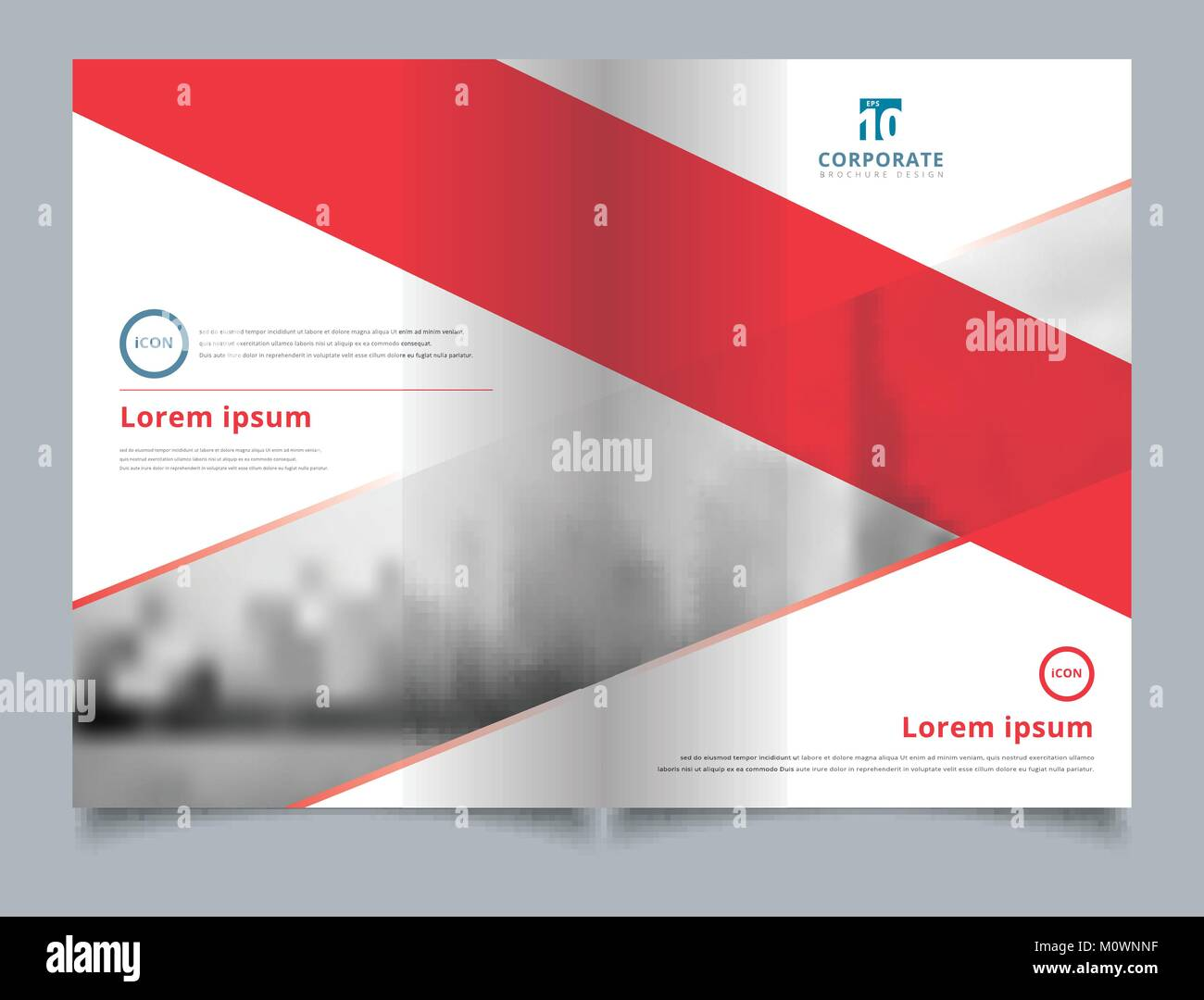 Brochure layout design template  Annual report  Leaflet  Advertising     Brochure layout design template  Annual report  Leaflet  Advertising   poster  Magazine  Business for background  Empty copy space  Red color tone  vect
