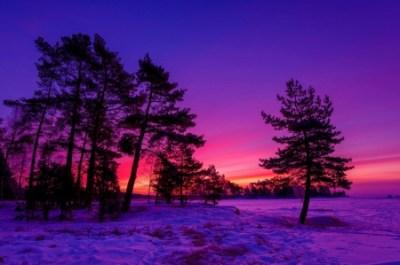 Winter Sunset - Sunsets & Nature Background Wallpapers on Desktop Nexus (Image 2354303)