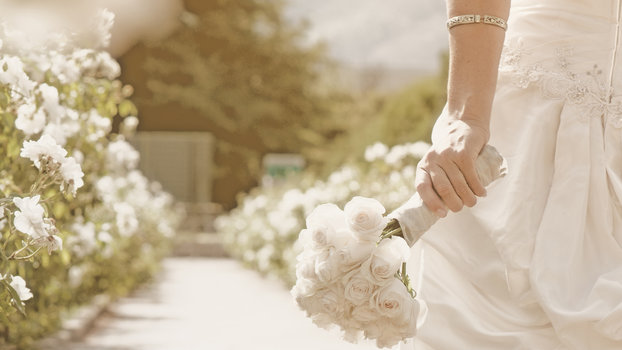Wedding Detox: Nutritionists Share How Brides Can Detox ...
