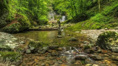 Green water nature trees outdoors rivers forest wallpaper | AllWallpaper.in #13006 | PC | en
