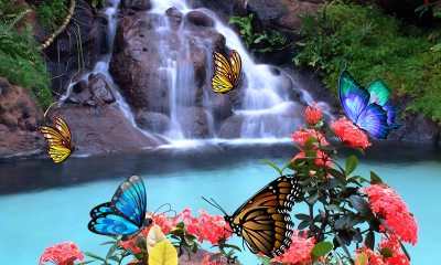 3D Butterfly Live Wallpaper 1.4 APK Download - Android Personalization Apps