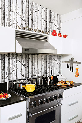 Wallpaper Kitchen Backsplash - Contemporary - kitchen