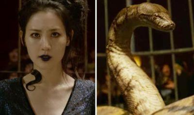Fantastic Beasts 2: Nagini REVEALED in Crimes of Grindelwald final trailer | Films ...
