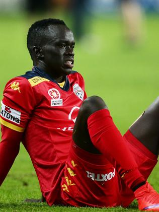 Awer Mabil yet to submit details on Sydney FC's Nikola Petkovic alleged sledged | Adelaide Now