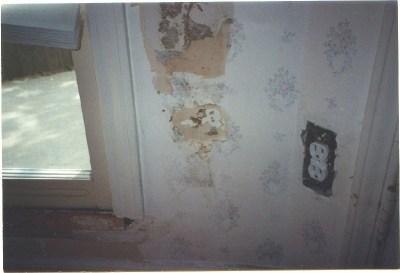 Termite Damage Signs: Detecting Termite Damage