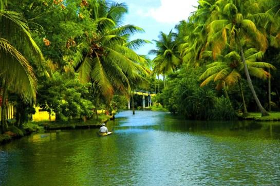 backwaters-of-alappuzha-in-kerala | Wallpapers HD