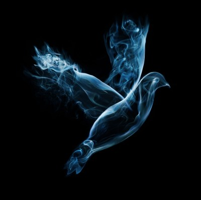 A dove flies on a black background made out of smoke Royalty-Free Stock Image - Storyblocks Images