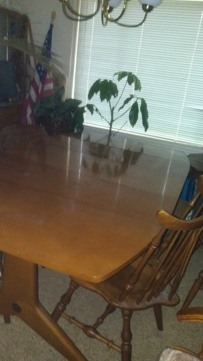 I Have A Brickwede Dining Table And Hutch That I'd Like To Know The Value O... | My Antique ...