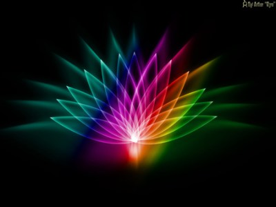 Light Lotus - 3D and CG & Abstract Background Wallpapers on Desktop Nexus (Image 216314)