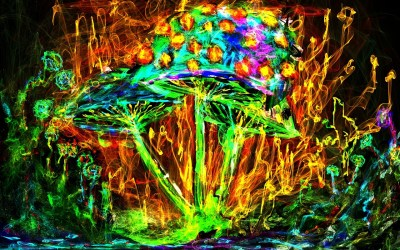 Psychedelic Art | Elevated Hustle 8|