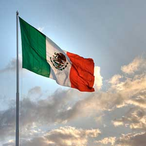 Industrial Burners | Trade missions to Mexico | E&M Combustion