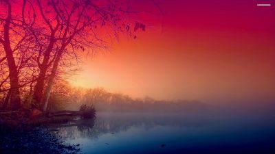 Beautiful Fog wallpaper   2560x1440   #29325