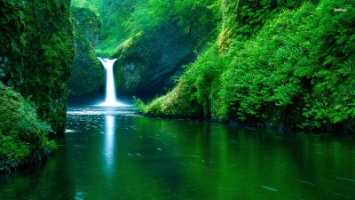 Cool Nature Backgrounds wallpaper | 1920x1080 | #8301
