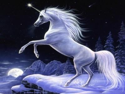 Unicorn Pictures wallpaper | 1024x768 | #66205
