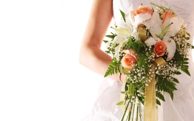 Free Wedding Pictures wallpaper | 1920x1200 | #8814