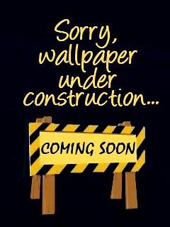 Wallpaper under construction.. . | Flickr - Photo Sharing!