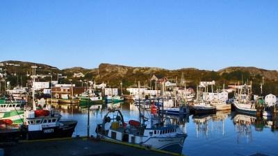 Moored in Port de Grave Harbour | Flickr - Photo Sharing!