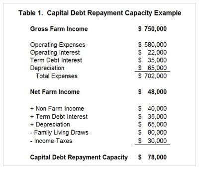 Debt repayment definition