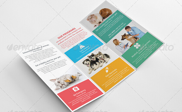 10 Professional Clinic Brochure Templates to Introduce Your Clinic     10 Professional Clinic Brochure Templates to Introduce Your Clinic to  Patients     PSD and AI Free