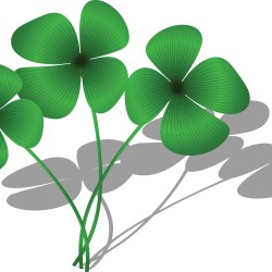 Clipart of a Trio of Four Leaf Clovers and Shadows