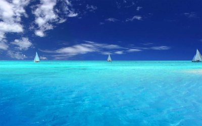 [Free Wallpaper][Sea Live], Worth Watching Wallpapers of Sea View. you will enjoy it ...