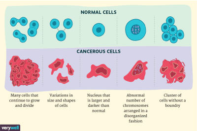 Cancer Cells vs. Normal Cells: How Are They Different?