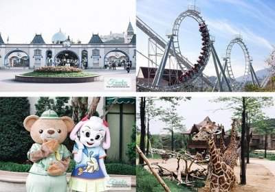 40% Off! Everland One Day Ticket & Shuttle Bus Package | Funtastickorea