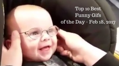 Top 10 Best Funny Gifs of the Day - Feb 18, 2017