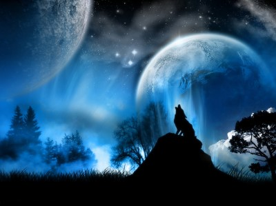 Cool night nature backgrounds