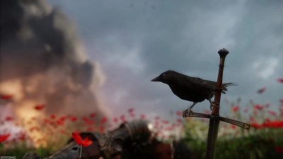 Wallpaper : video games, nature, morning, Kingdom Come Deliverance, flower, bird, 1920x1080 px ...