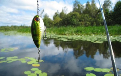 Bass Fishing Wallpaper HD (62+ images)