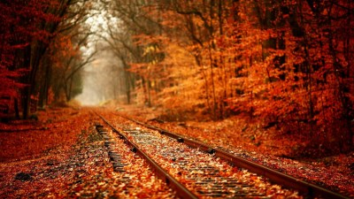 1920x1080 HD Autumn Wallpapers (61+ images)
