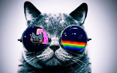 Cool Cat Wallpapers (71+ images)