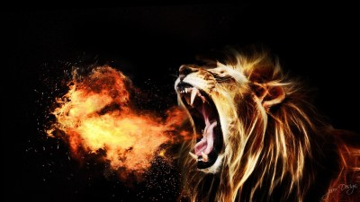 Cool Lion Wallpaper (54+ images)