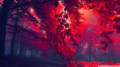 Red HD Wallpapers 1080p (73+ images)