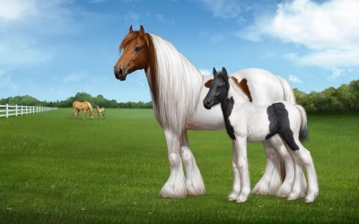 Cool Horse Backgrounds (57+ images)