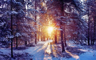 Beautiful Winter Wallpapers (60+ images)