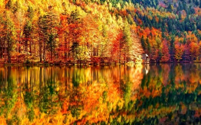 HD Fall Wallpapers (60+ images)