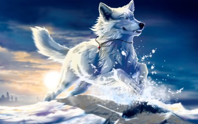 Cool Anime Wolf Wallpapers (56+ images)